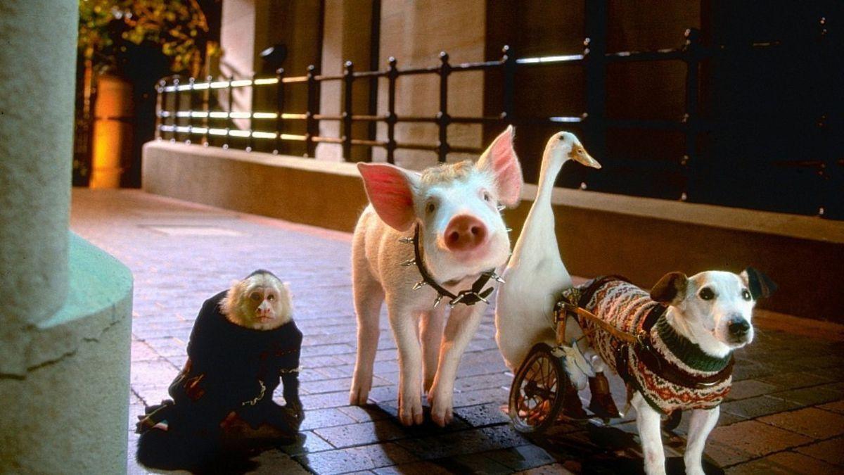 Babe, le cochon dans la ville (1999) de George Miller