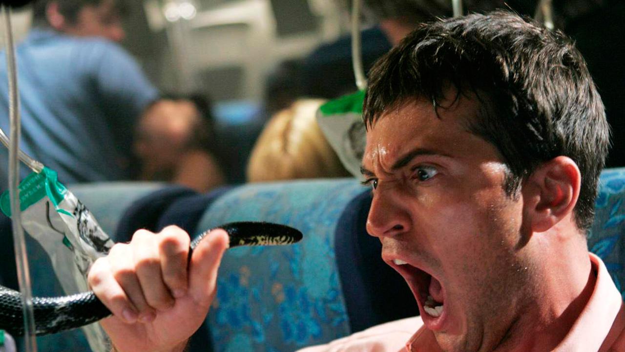 Des serpents dans l'avion.